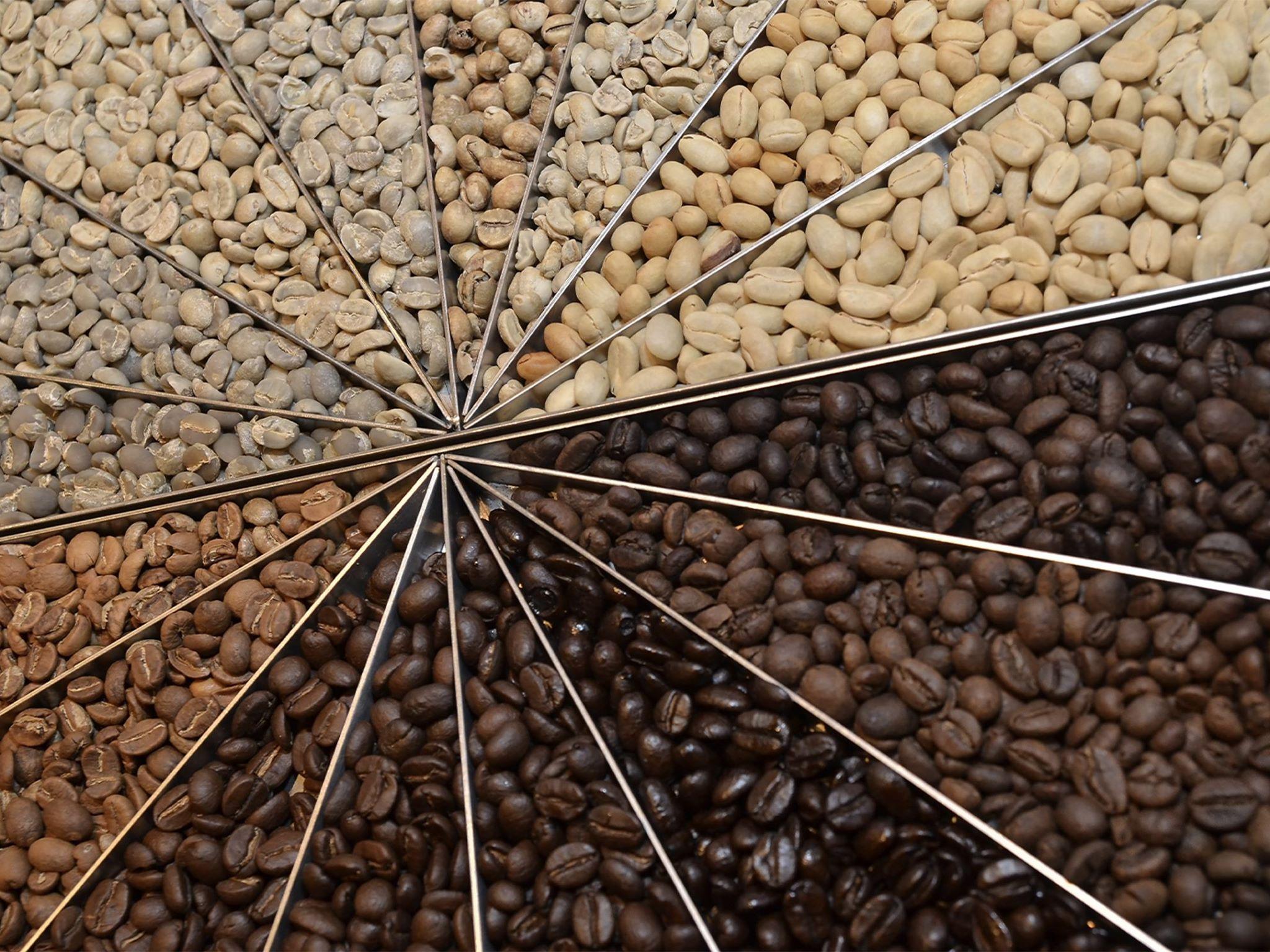 コーヒーには、ランクがある。だけど、ランクだけで好きになれないのは、人間と同じ。